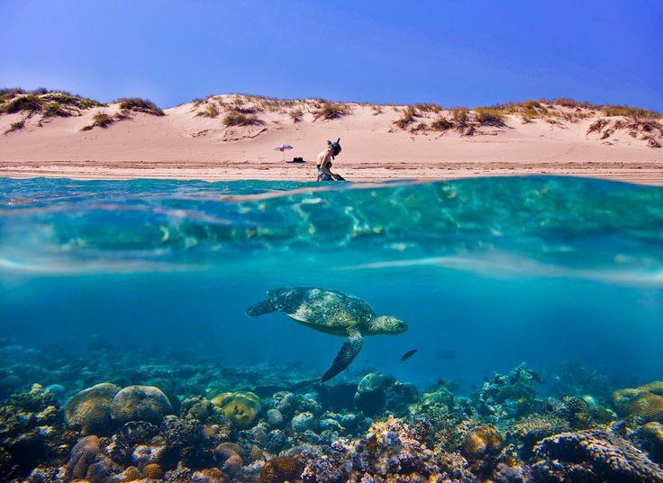 Northern Western Australia