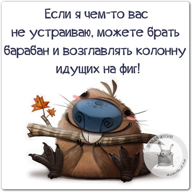 """1,061 Likes, 4 Comments - Правда жизни (@lifeoftrue) on Instagram: """"#правдажизни #юмор #позитив #барабан"""""""