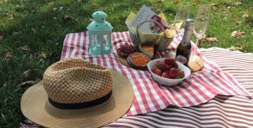 "Picnic experience  Arina In Wonderland – ""Everything starts with a dream."""