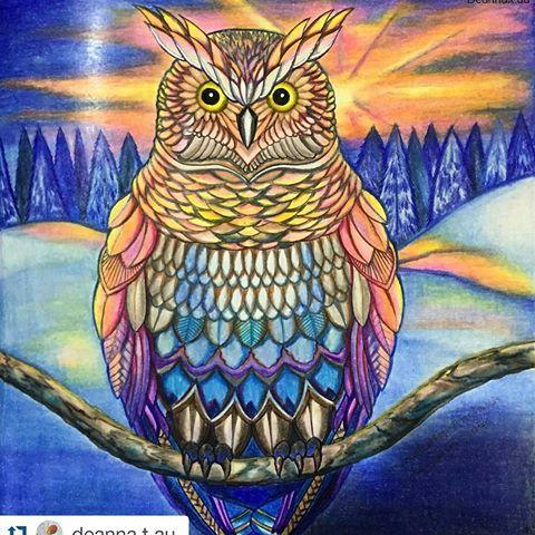 Animal Kingdom Coloring Book Instagram 999 Best Millie Marotta Images On Pinterest