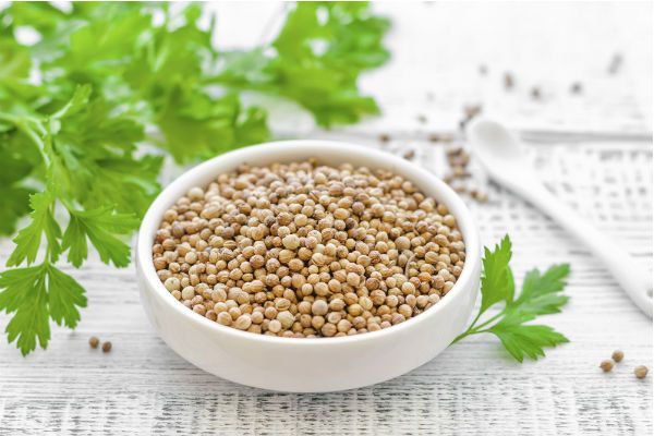 All about Coriander: 1 ingredient, 5 recipes