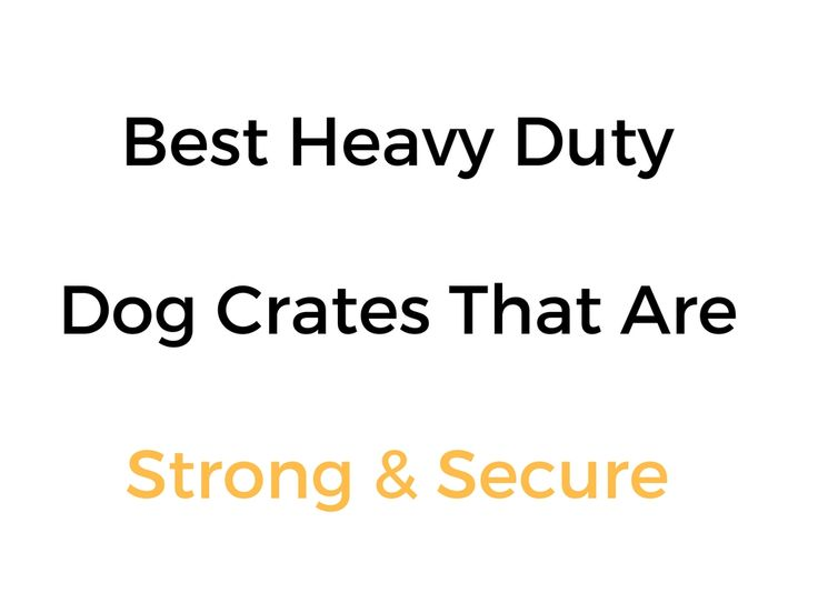 Best Super Heavy Duty Dog Crates That Are Strong & Secure