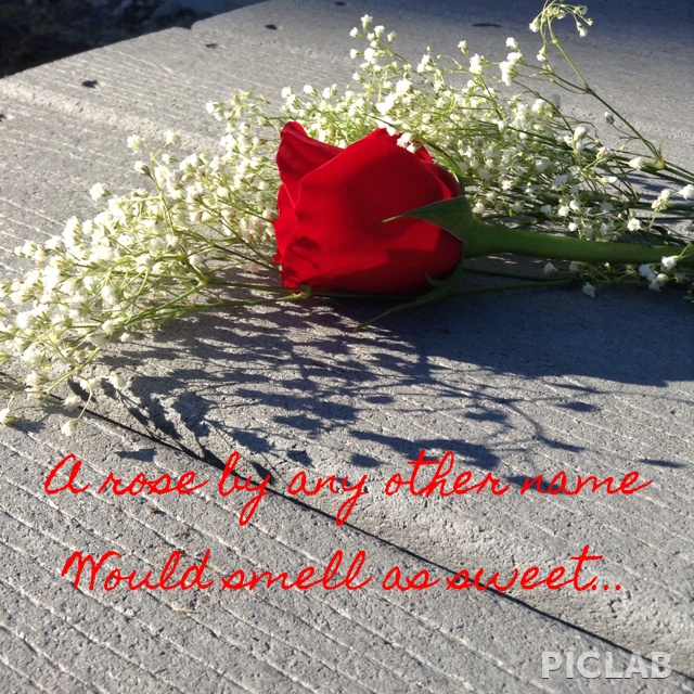 Romeo And Juliet Quotes About Fate: 33 Best Images About Romeo And Juliette On Pinterest