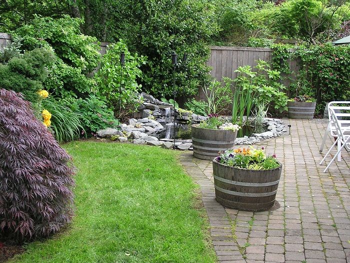 808 best images about water gardening ponds for Pond shade ideas