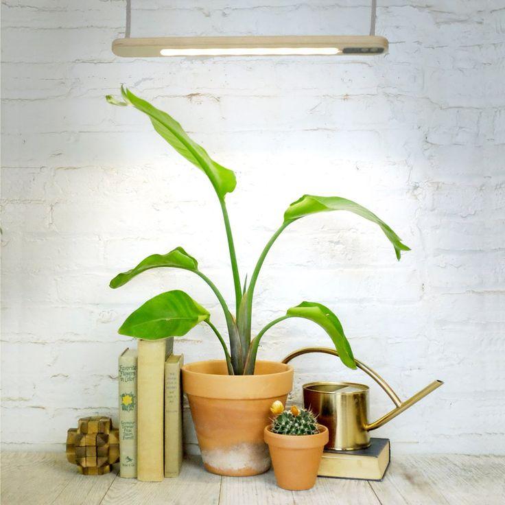 Growbar Grow Lights 12 best Modern Sprout