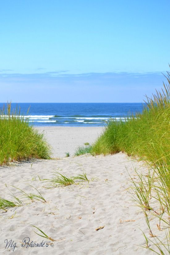 Beautiful beach dunes that stretch 60 miles along Washington's southwest coast. Via Sally Lee By The Sea