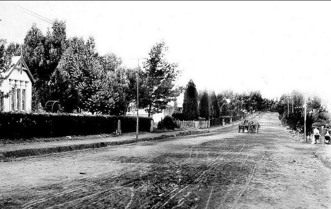 Saratoga Avenue, Doornfontein, Johannesburg pictured in 1895 (With acknowledgement to Friedel Hansen)