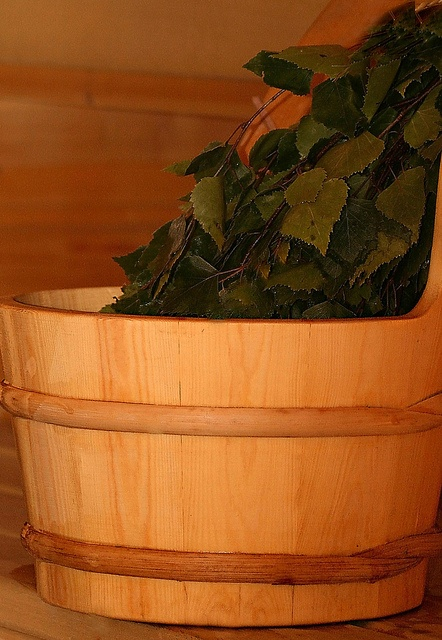 """""""Vihta"""" in West Finland and """"vasta"""" in East Finland...soaked-first-in-water birch swatches for slapping against your skin to, how do I put it, wake it up. ;-)"""