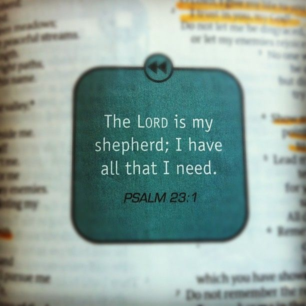The LORD is my shepherd, I shall not be in want. He makes me lie down in green pastures, he leads me beside quiet water