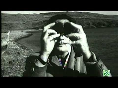 La Proporción Áurea   Documental Redes Eduard Punset