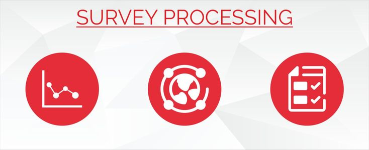 Data Processing Services Provide all services such as data processing, word processing, survey processing, image processing and other back end office support.