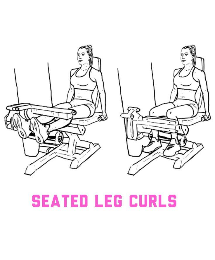 Seated leg curls