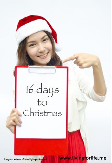 Remove or reduce stress this Christmas - 16 days to Christmas