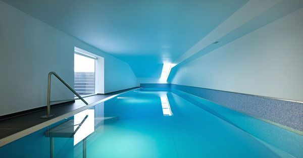 z house minimalist indoor swimming pool in basement | home
