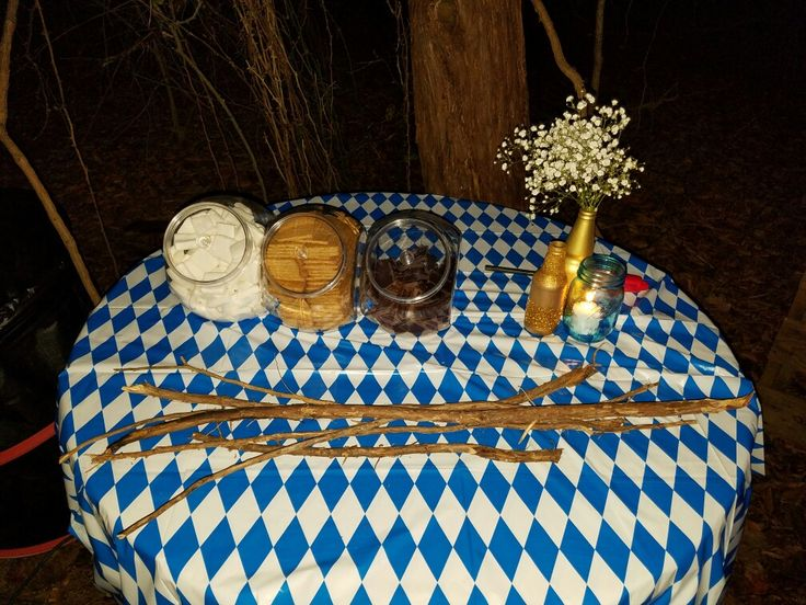 biergarten outside birthday party oktoberfest style, S'mores table