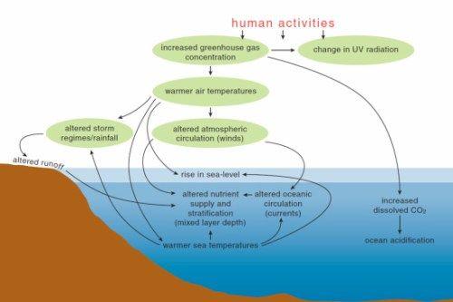 Proses terjadinya perubahan iklim dunia. (Sumber: ocean climate change)