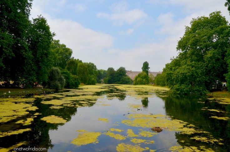 Saint James's Park - londra - Vista di Buckingham Palace