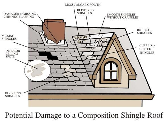 Have A Quick Look At The   Potential Damage To A Composition Shingle Roof. #