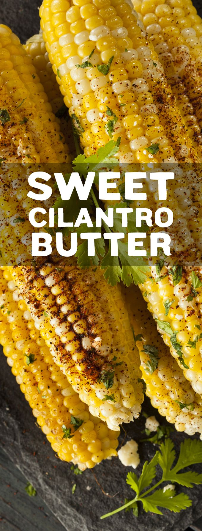 Sweet cilantro butter on freshly grilled corn is pretty much summer on the cobb and you're gonna love it!