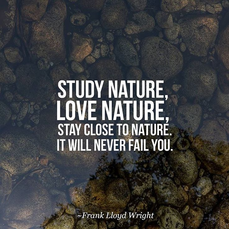 """Study nature, love nature, stay close to nature. It will never fail you."" - Frank Lloyd Wright"
