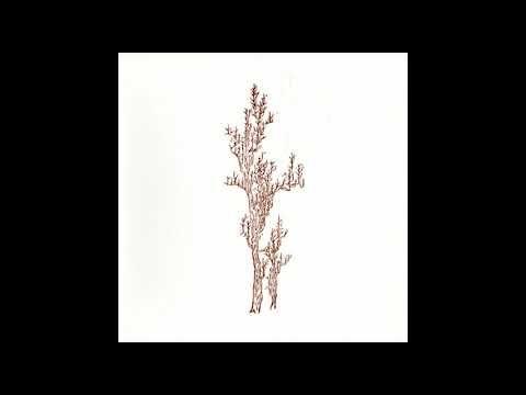 Ulaan Passerine - The Landscape of Memory - full album (2017)