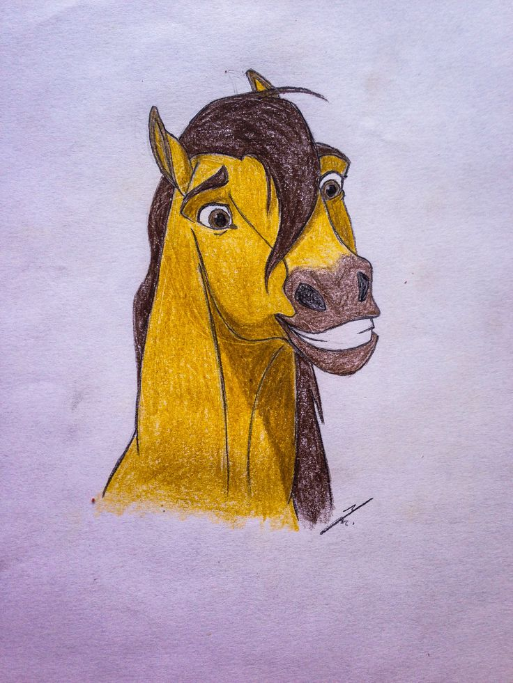 Spirit the stallion of cimarron