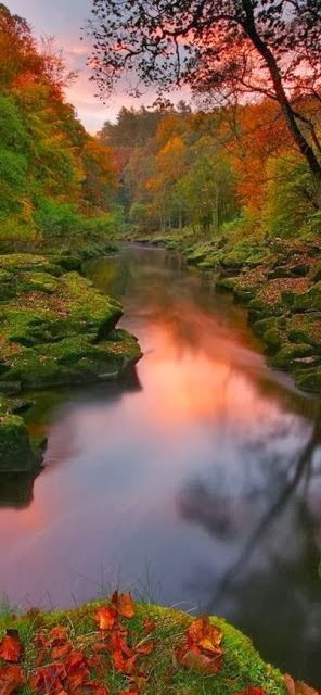 the River Wharfe at Bolton Abbey in the Yorkshire Dales, United Kingdom