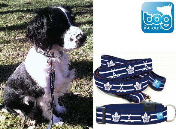 TogPetwear Officially Liscensed Toronto Maple Leafs Collar and Leash