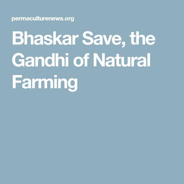 Bhaskar Save, the Gandhi of Natural Farming