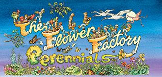 The Flower Factory Nursery ~ The midwest's largest selection of perennials