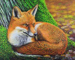 Fox British Wildlife UK by simon-knott-fine-artist at zippi.co.uk