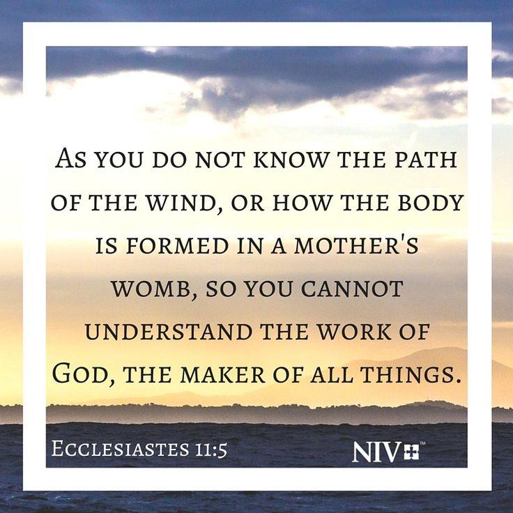 NIV Verse of the Day: Ecclesiastes 11:5