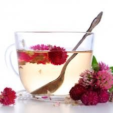 Find here How to Make Red Clover Tea to Relieve Cough and Bronchitis. It's easy to make and effective.