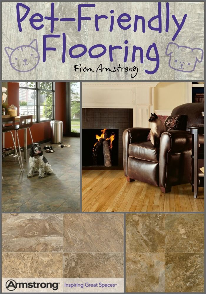 Want the best pet-friendly flooring? What works best for cats and dogs? We've got the answers right here.