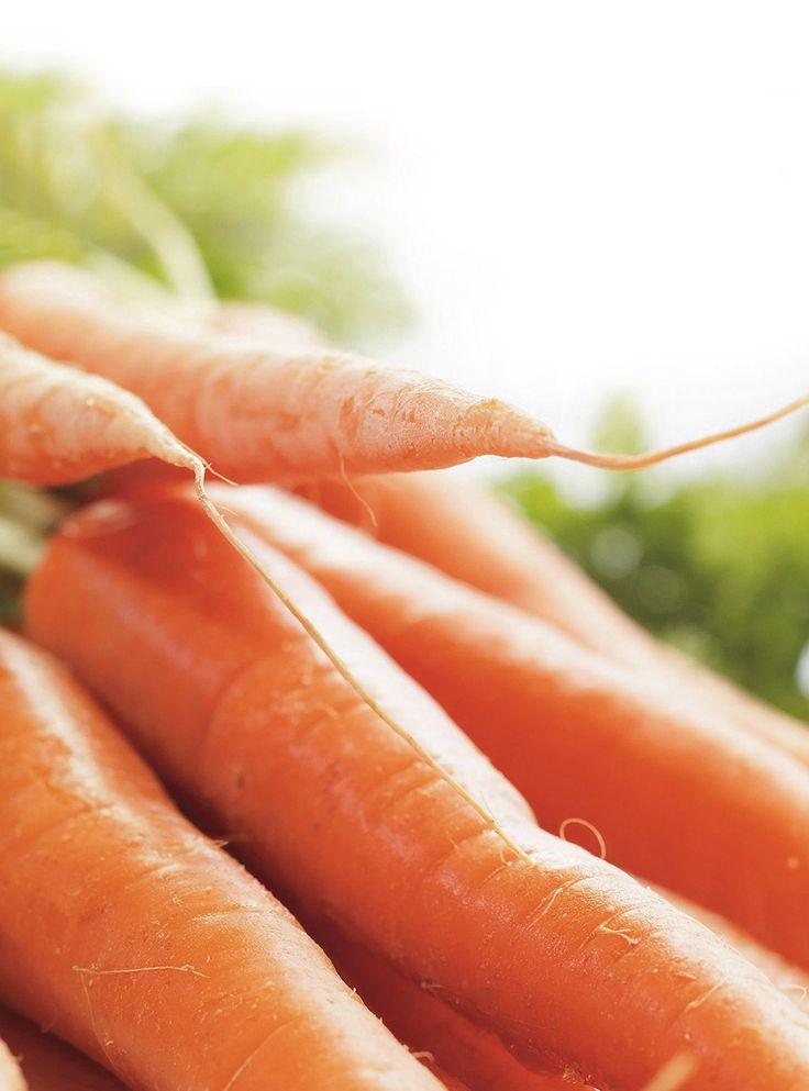 Recette de Ricardo: Muffins aux carottes