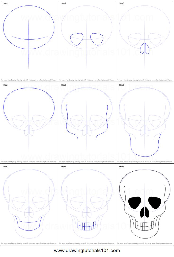 How to Draw Skull Easy printable step by step drawing sheet : DrawingTutorials101.com