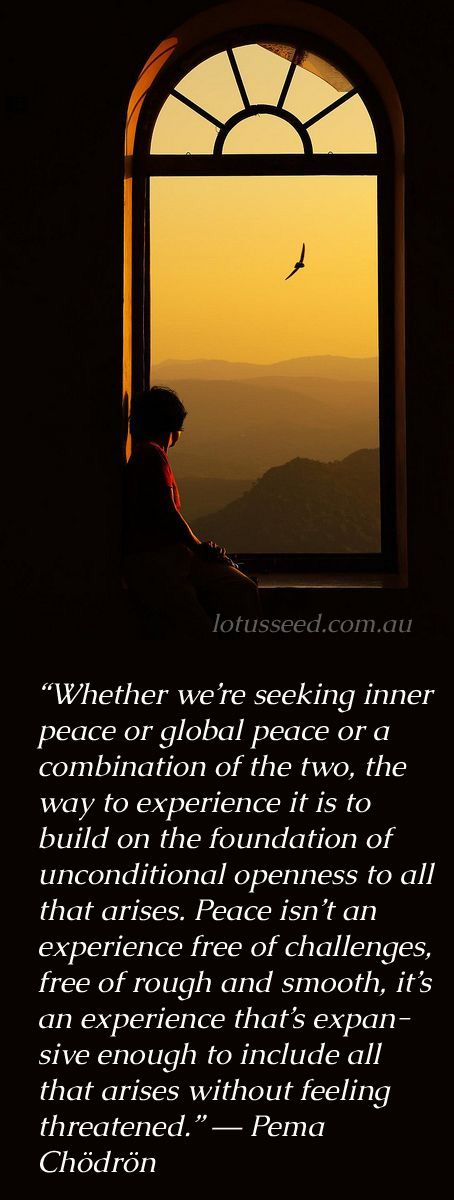 Pema Codron quotes by lotusseed.com.au
