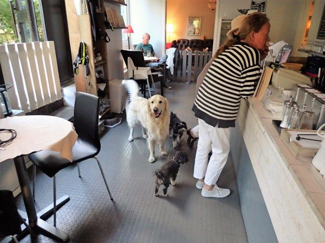 Himmelska Hundar A Dog Friendly Cafe In Stockholm Sweden Dog Friends Dog Cafe Stockholm Restaurant