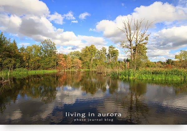 LivinginAurora_2012