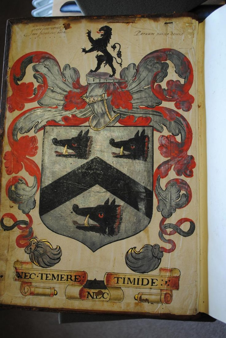 #Provenance help! Does anyone recognise these arms on a 16th c. binding on a 1576 Corpus Juris Civilis from Paris.