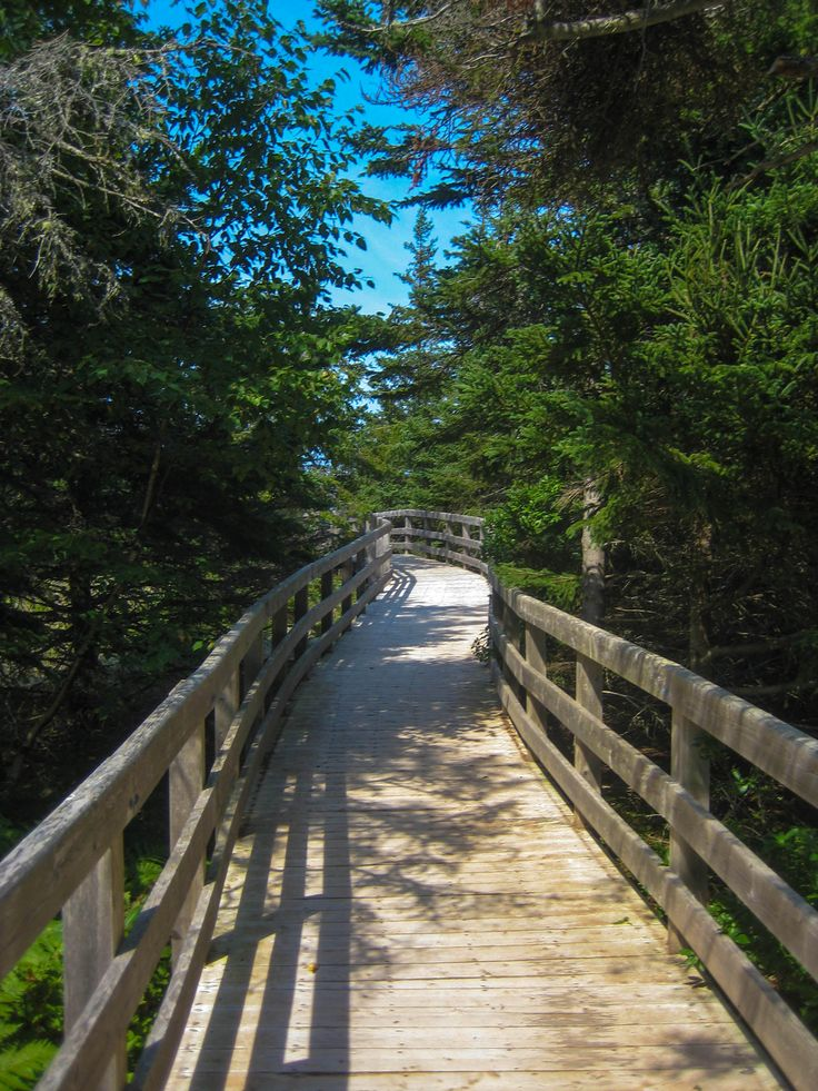 Holiday In PEI Canada  - Travel photo of the day highlighting the floating walkways at Greenwich National Park on Prince Edward Island Canada.  #HolidayInPEICanada  http://www.farawayvacationrentals.com/view-blog/Holiday-In-PEI-Canada/160