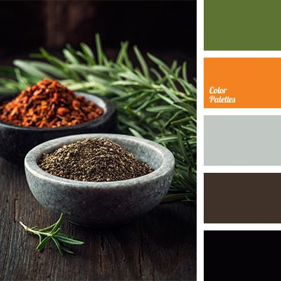 This warm palette embodies a exoticism. Bright colours such as orange and dark green are shaded with cold light gray and dark gray and black colours are th.