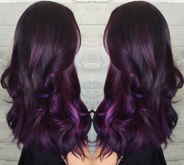 Short black hair purple highlights the best black hair 2017 best 25 dark purple highlights ideas on purple hair color pmusecretfo Images