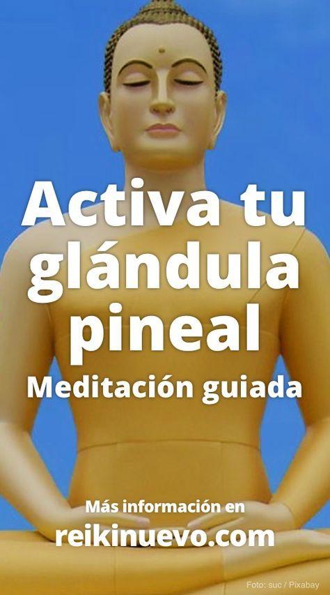 Nueva meditación para activar la glándula pineal. Más información: https://www.reikinuevo.com/meditacion-activar-glandula-pineal/