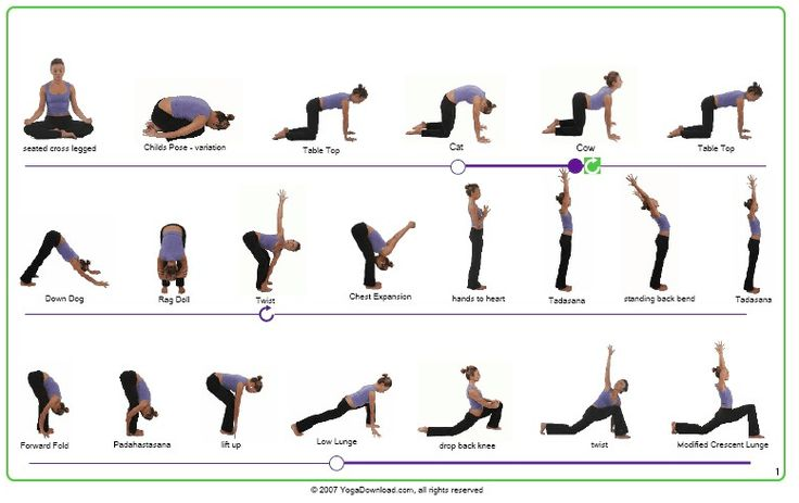 Find Your Zen With Yoga For Beginners Basic Yoga Poses