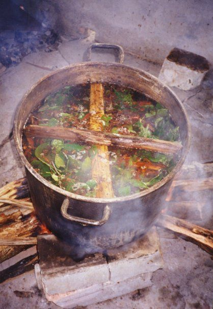 Cooking the ingredients for the ayahuasca drink