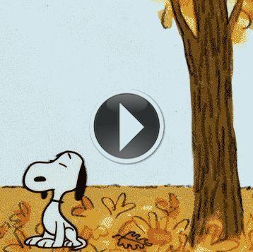 snoopy,gif,autumn