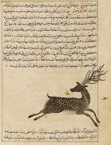 59 best Manuscript: Islamic images on Pinterest | Arabic ...