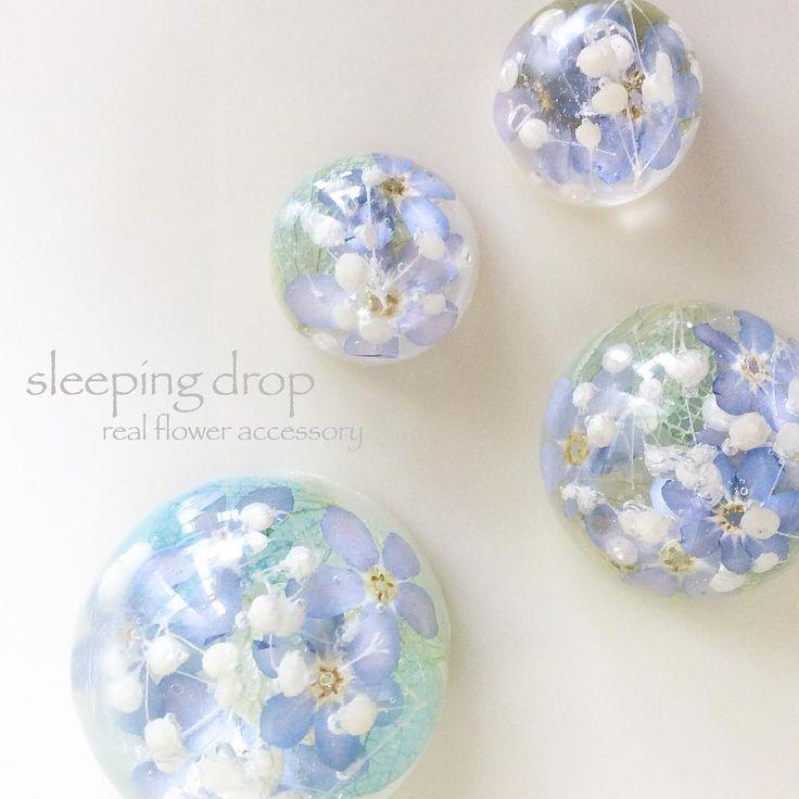 93 個讚,9 則留言 - Instagram 上的 sleeping drop(@bo_ta_ni_cal_press):「 #忘れな草 と #かすみ草 。小さな花の集まった様子はなんとも可愛い物です #紫陽花 も入れています。  #ピアス #イヤリング #ヘアゴム #帯留め のパーツとして制作中。 #押し花… 」