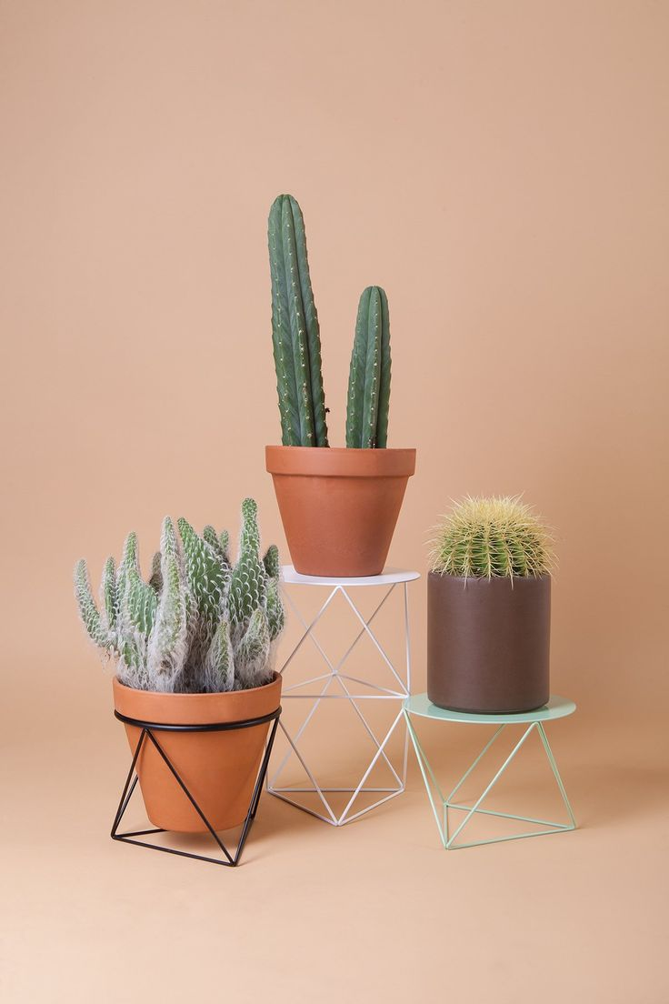 Octahedron Ring Planter and Pedestals designed by Eric Trine. Orange Coast Magazine.